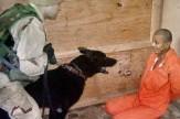 باشگاه خبرنگاران -فرانس ۲۴: شکنجهها و اقدامات توهینآمیز آمریکاییها در ابوغریب زمینهساز قدرتگیری داعش شد