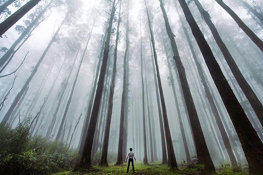 پیدا شدن جوان گم شده در جنگلهای نکا
