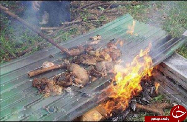 تصاویری رقت بار از اجساد سوخته مسلمانان میانمار