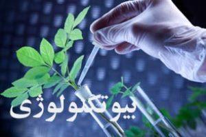 تولید محصولات زراعی و باغی یک اندازه و یک شکل، با استفاده از بیوتکنولوژی