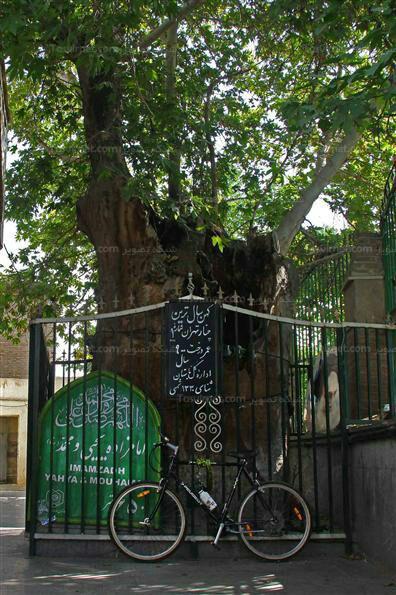 امامزاده یحیی(ع) نگین درخشنده در محله عودلاجان
