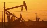 باشگاه خبرنگاران -سرمایه گذاری 9 میلیارد دلاری چین در بخش نفت روسیه