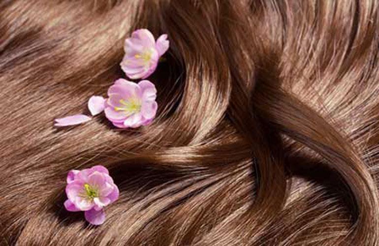 8 ماده غذایی برای داشتن موهایی سالم + اینفوگرافی