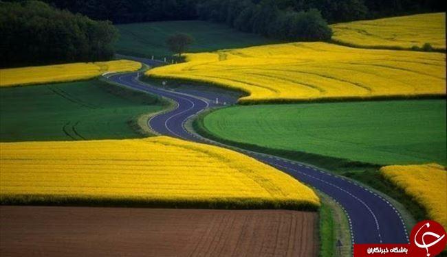 سفری مجازی به جالب ترین جاده های جهان+تصاویر