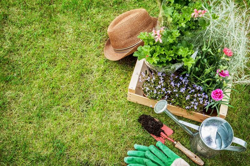 ۱۰ فایده شگفت انگیز باغبانی برای سلامت بدن + اینفوگرافیک