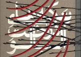 باشگاه خبرنگاران -«ترکههای درخت آلبالو» تجدید چاپ میشود