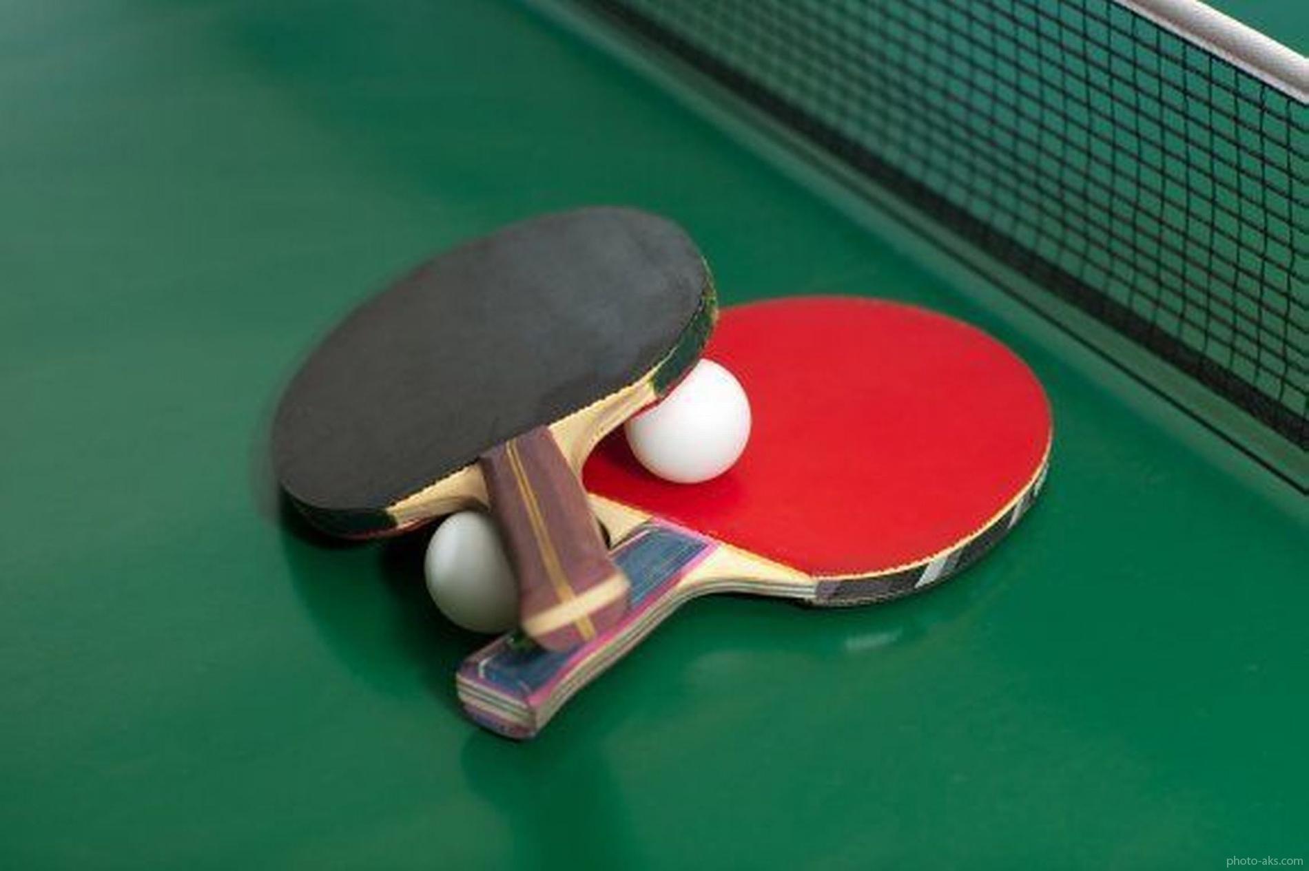 قضاوت داور ایرانی در مسابقات تنیس روی میز کاپ آسیا