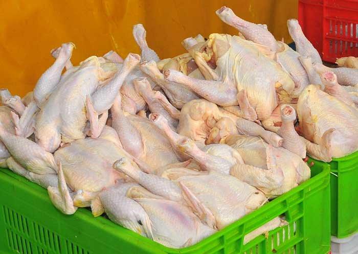 نیازی به عرضه مرغ منجمد در محرم نیست