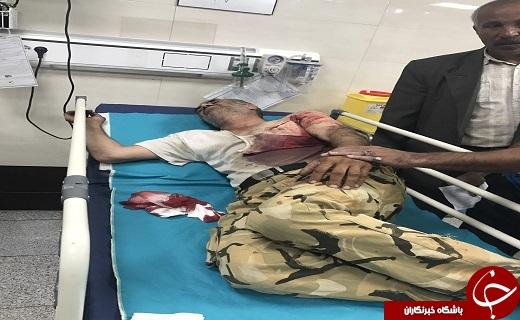 حمله پلنگ به مرد روستایی+عکس