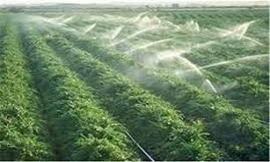 رشد 148 درصدی اجرای طرح توسعه سامانه نوین آبیاری