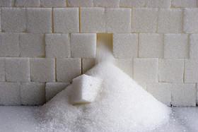 خوداتکایی 95 درصدی تولید شکر / قیمت شکردر ماه محرم  افزایش نمی یابد