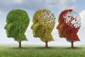 اگر میخواهید آلزایمر نگیرید، مغزتان را به چالش بکشید
