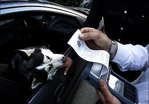 شیوه جالب رانندگان برای فرار از جریمه + فیلم