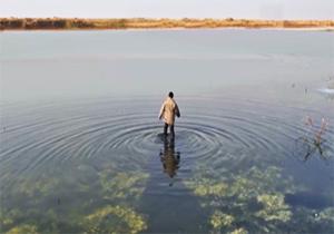 فیلم «دریاچه ماهی» روایتگر زندگی پس از جنگ + فیلم