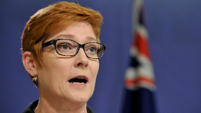 دیدار وزیر دفاع استرالیا با مقامات آمریکایی در مورد جنگ افغانستان