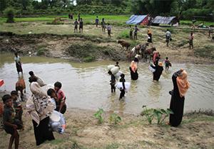 فشار دوجانبه میانمار و بنگلادش به آوارگان روهینگیا + فیلم