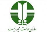 باشگاه خبرنگاران -تصادفات جادهای عامل اصلی تلفات یوزپلنگ ایرانی/حذف گازهای CFC تنها راه حفظ لایه ازون
