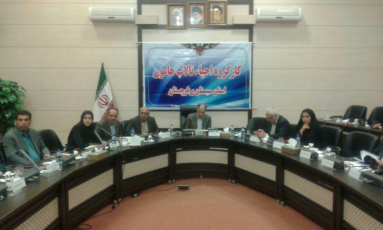 تشکیل کارگروه بین ایران و افغانستان بهترین کمک برای احیای تالاب هامون است