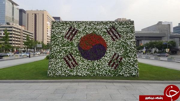 عکس کشور سئول
