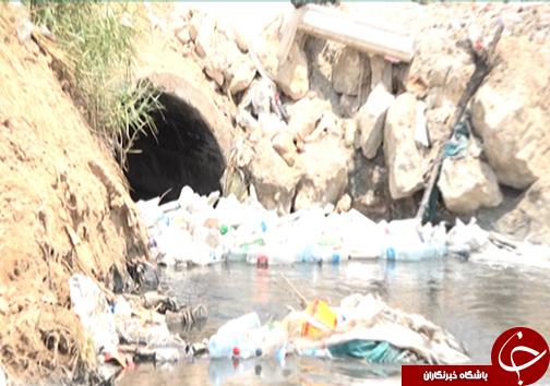 بوی بد فاضلاب و نبود بهداشت در ورودی شهر شیراز/ مسئولین مربوطه مشکلات را دریابند