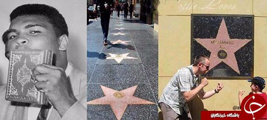 عکس 6691271_486 تنها ستاره هالیوود که روی دیوار است +تصاویر