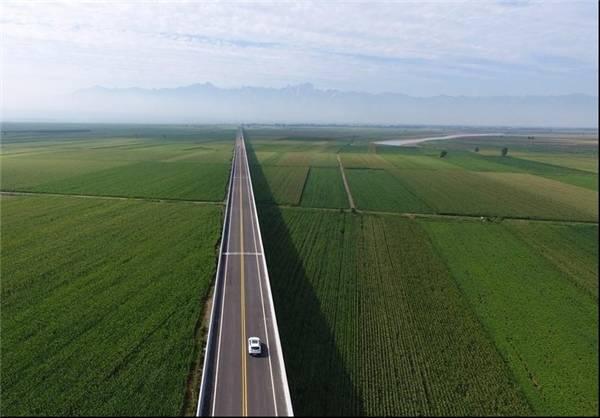 ساخت بزرگراه یک میلیارد دلاری+تصاویر
