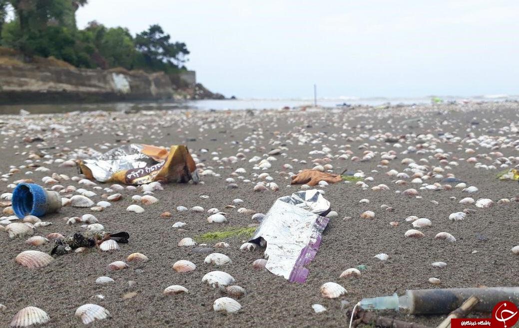 رها شدن زباله در حاشیه رودخانه + تصاویر