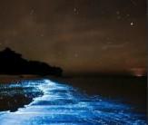 باشگاه خبرنگاران -روشناییهای طبیعی دریا +تصاویر