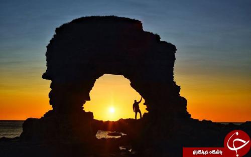 تصاویر روز: از مزایده کاسه ای با قدمت 900 ساله تا خرسی که بر روی مبل استراحت می کند