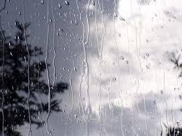 کاهش بارشها در استان بوشهر/ جلوگیری از افزایش سطح زیر کشت