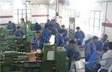 850شغل پایدار در بردسیرایجاد شد