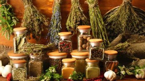 ۱۰ گیاه با خواص اعجاب انگیز برای لوزالمعده