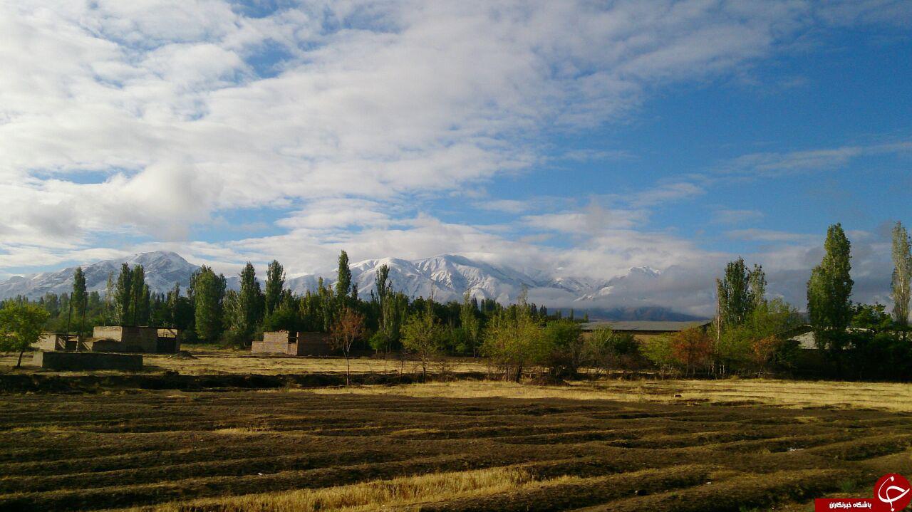 طبیعت برفی منطقه میشو + تصاویر