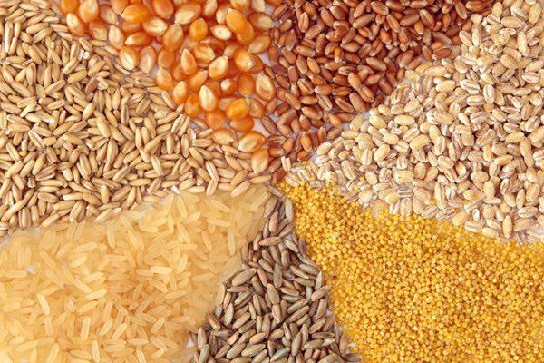 افزایش قیمت محصولات پروتئینی در راه است/ هشدار به سه وزیر درباره حذف ارز مبادله ای خوراک دام