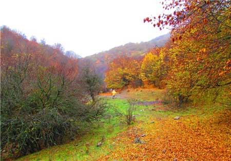 مکانهای شگفتانگیز طبیعت ایران در پاییز
