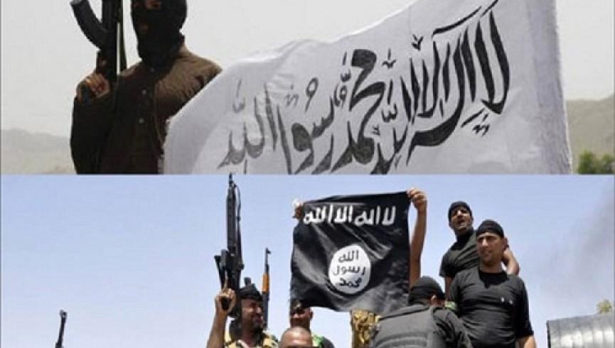 شورای رهبری طالبان غرب افغانستان هرگونه مصالحه با داعش را ممنوع کرد