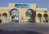 باشگاه خبرنگاران -جشنواره فرهنگی و ورزشی شهدای دانشجوی استان بوشهر برگزار میشود
