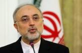 باشگاه خبرنگاران -صالحی: تاسیسات هستهای فردو نماد اقتدار ملی است