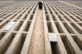 باشگاه خبرنگاران -سنگ قبرها با نمادهای ایرانی طراحی میشوند
