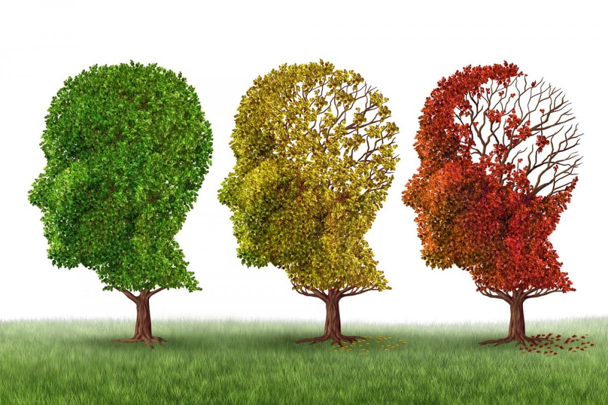 1-چگونه از ابتلا به آلزایمر مصون بمانیم2-چگونه ابتلا به آلزایمر را درخود مهار کنیم3-راهکارهایی برای اینکه در سالمندی مبتلا به آلزایمر نشوید4-از هم اکنون برای جلوگیری از ابتلا به آلزایمر اقدام کنید