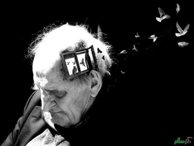 دام تازه سودجویان: درمان قطعی آلزایمر با عصاره گل سرخ!