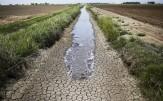 باشگاه خبرنگاران -بهرهوری آب در بخش کشاورزی تنها ناجی منابع آبی کشور