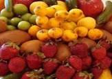 باشگاه خبرنگاران -افزایش قیمت میوه در بازار بجنورد