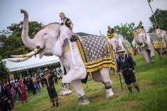 باشگاه خبرنگاران -تصاویر روز: از حضور نخست وزیر کانادا در میان آتشنشانان مکزیکی تا فیلهای سفید در نخستین سالگرد درگذشت پادشاه تایلند