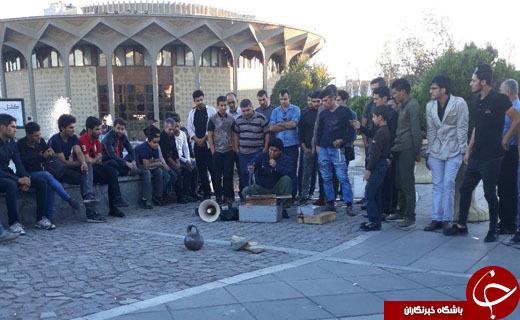 پای مارگیران به تئاترشهر باز شد + تصاویر
