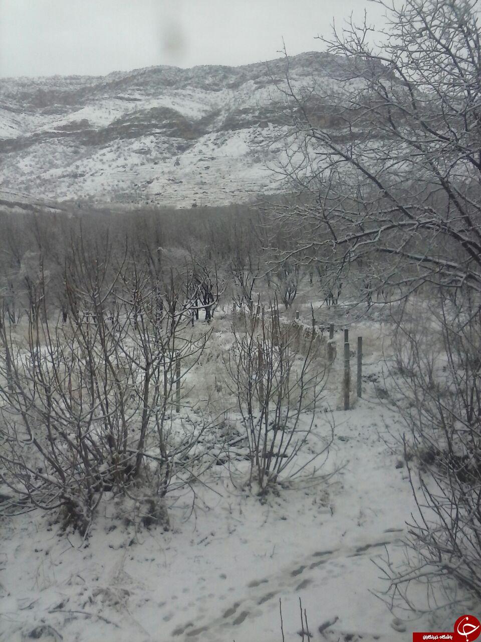 طبیعت کوهستانی شهر ریجاب + تصاویر