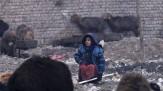 باشگاه خبرنگاران -وضعیت آموزشی دختران در افغانستان شکننده و در حال فروپاشی است