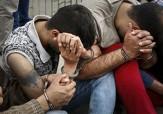باشگاه خبرنگاران -دستبند بر دستان سارقان احشام