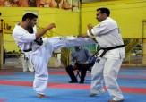 باشگاه خبرنگاران -درخشش رزمی کار سمنانی در مسابقات کاراته یونیون اوراسیا