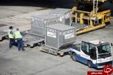 باشگاه خبرنگاران -چه اتفاقی برای چمدانهای شما در فرودگاه میافتد؟ + فیلم و تصاویر